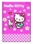 Zeszyt A5 16k. linia podw.kolor Hello Kitty